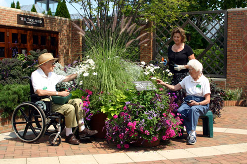 gardening for disabled
