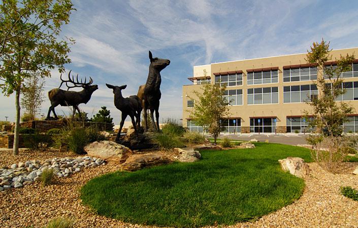 Forest Service landscape incorporates low water plants
