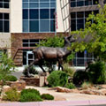 Majestic sculpture, handsome building and gorgeous New Mexico blue sky