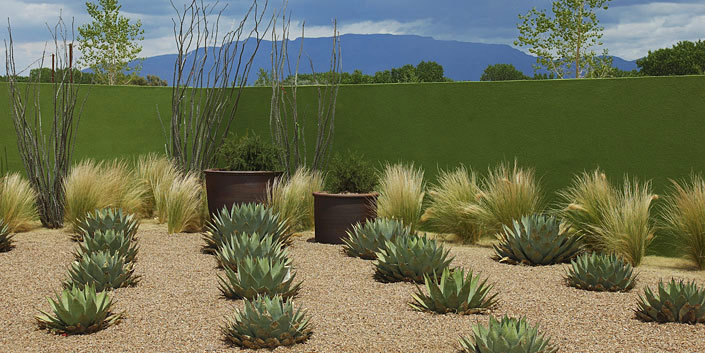 Residential Landscaping Albuquerque : We help you take advantage of the albuquerque bernalillo county water